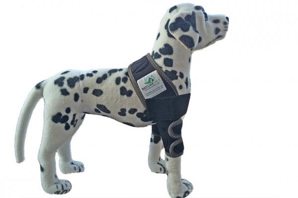 Ellbogenbandage / Liegeschwielenbandage / Schulterbandage Hund