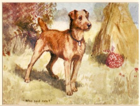 "Kunstdruck - Irish Terrier ""Who said rats?"""