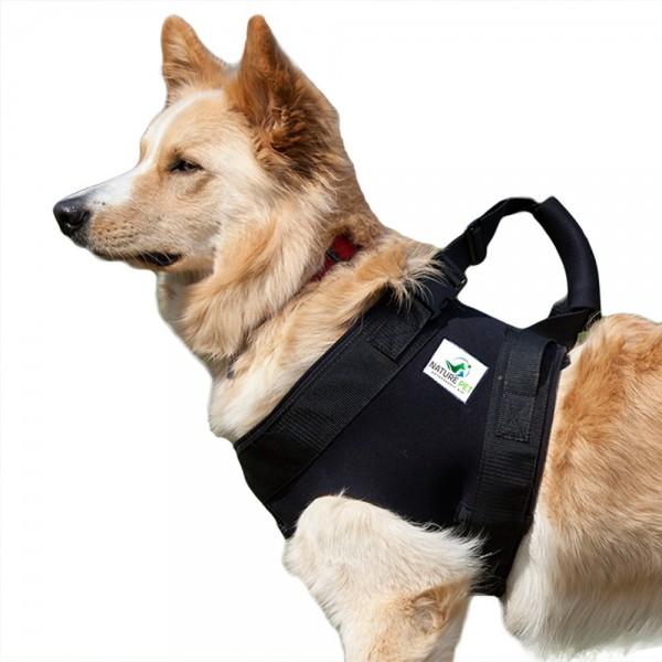 Tragehilfe Hund vorne